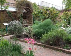 The Geffrye Herb Garden